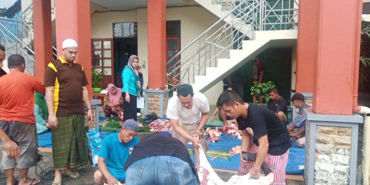 Penyembelihan Hewan Qurban Pengadilan Agama Manado